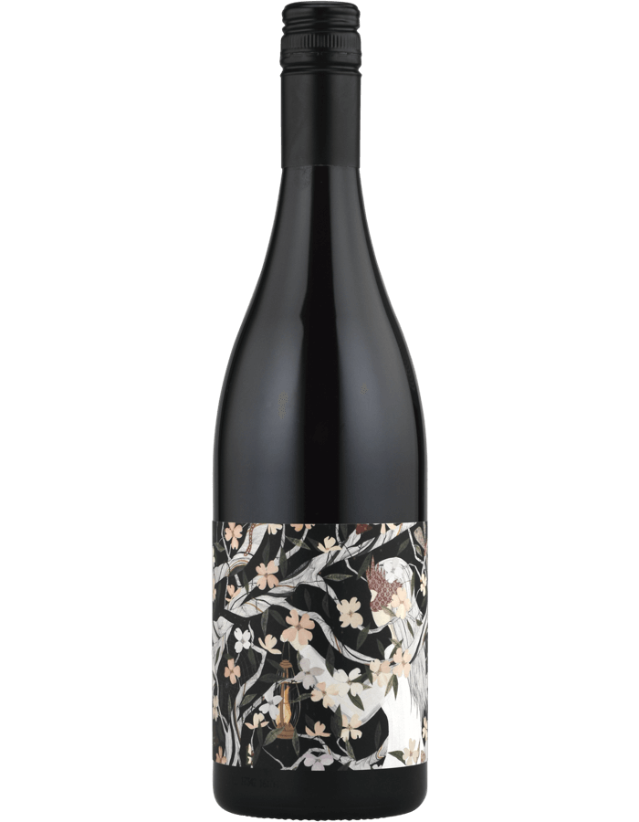 2017 Adelina Eternal Return Dolcetto