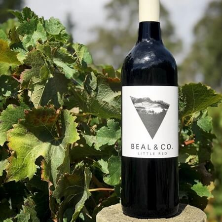 Beal & Co. in the vineyard