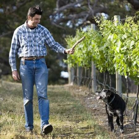 Michael Dhillon in the vineyard