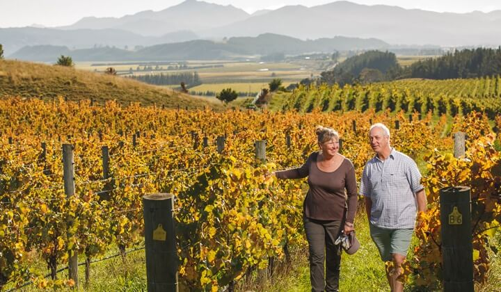 Sam and Mandy Weaver amongst their vines