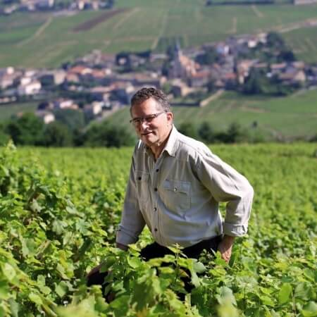 Winemaker Dominique Piron