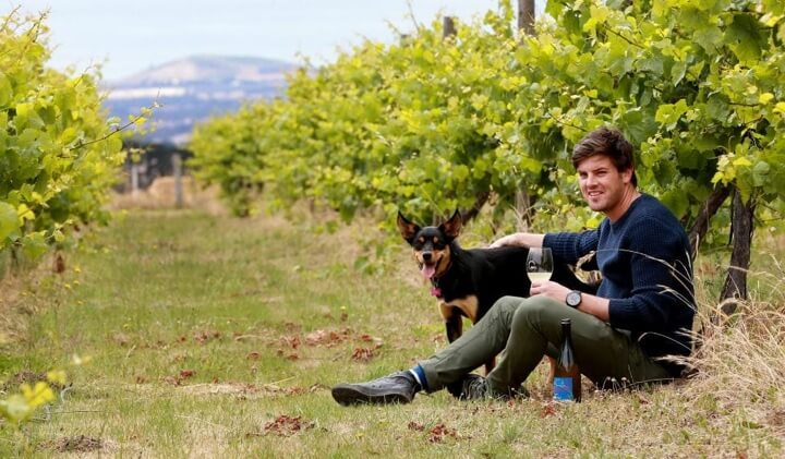 Young star winemaker Owen Latta, feeling at home amongst the vines