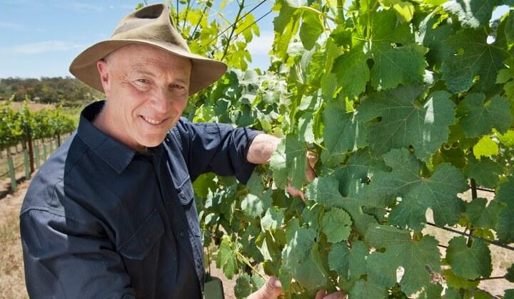 Larry Jacobs in his vineyard