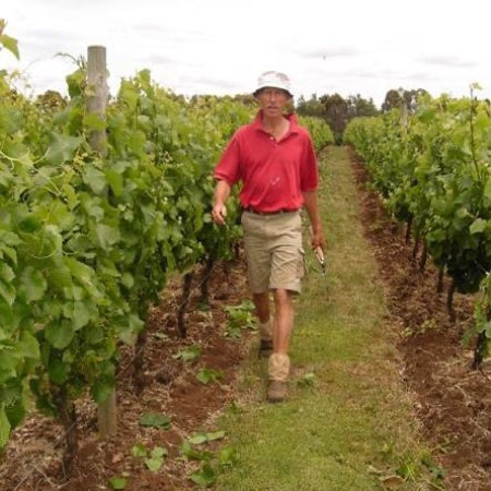 John in the vineyard