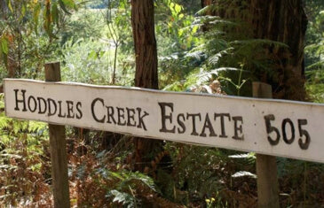 Hoddles Creek
