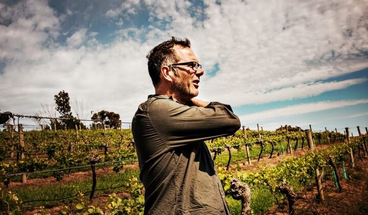 Gaz surveying one of his great vineyard sources