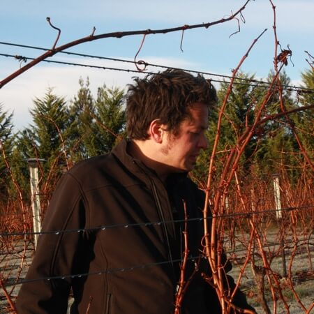 Oli in the vineyard