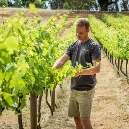 Winemaker Michael Sexton