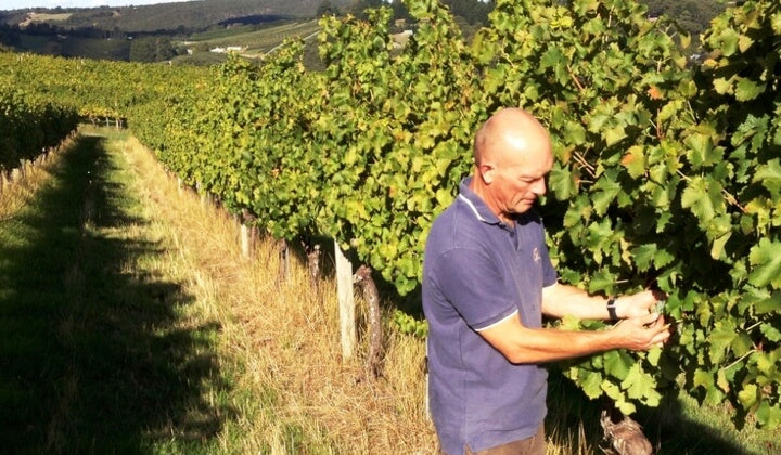 Winemaker Michael Hall