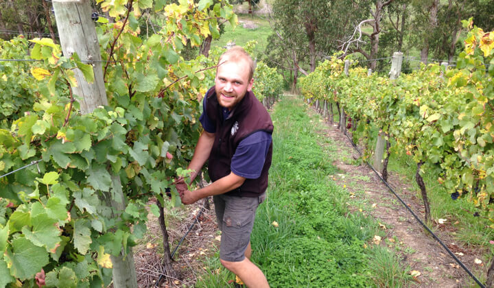 A smiling Michael Downer in the family vineyard