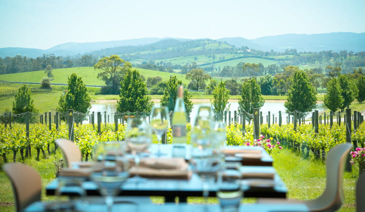 The tremendous view from the Oakridge Cellar Door Resturant