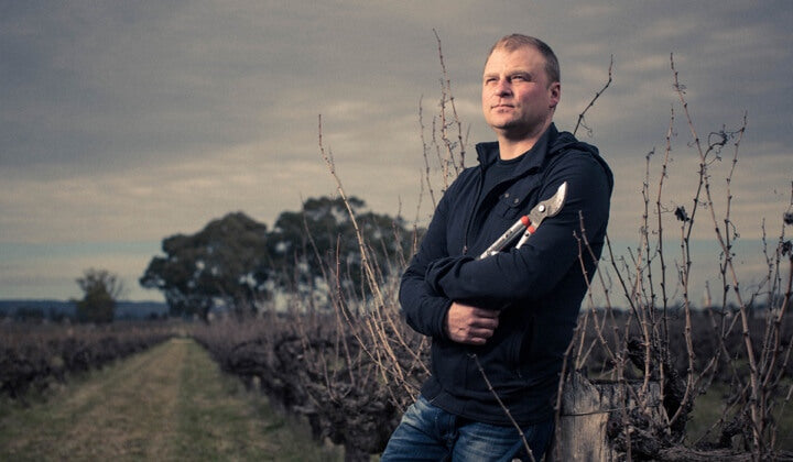 Dan Standish tending his ancient vines