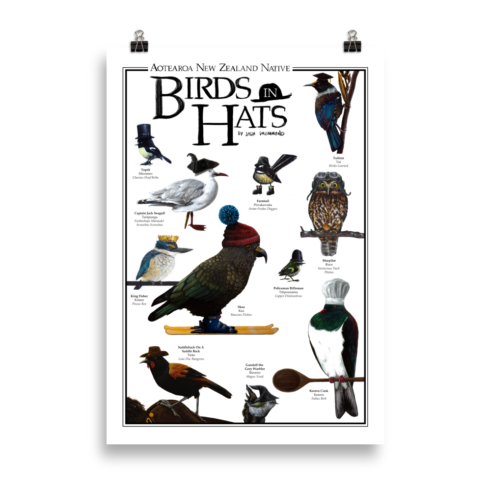 Aotearoa New Zealand Native Birds In Hats - Matte Poster Print