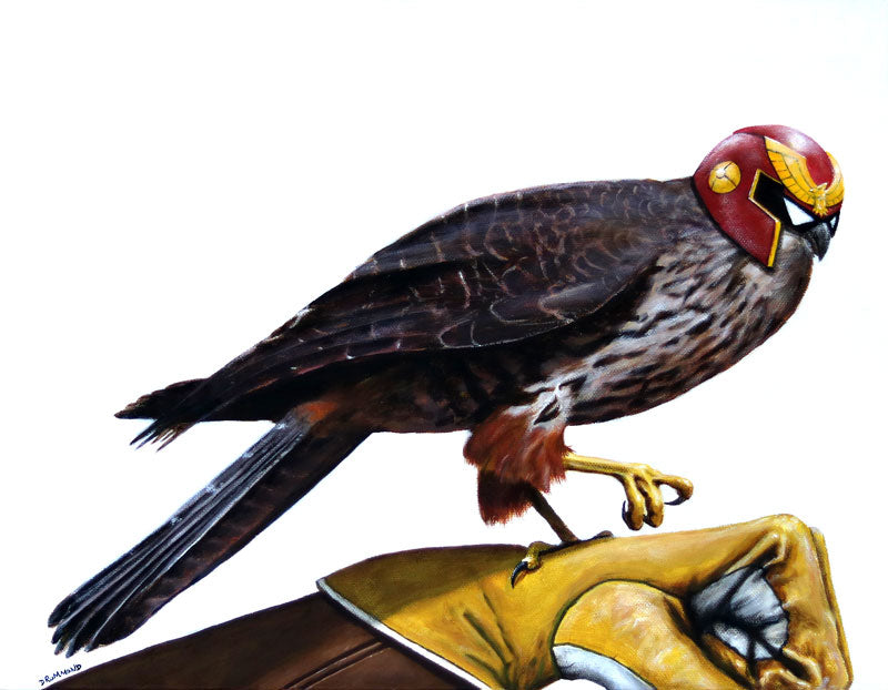 Captain Falcon Falcon - PDF