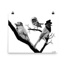 Three Birds In Hats - Matte Poster Print