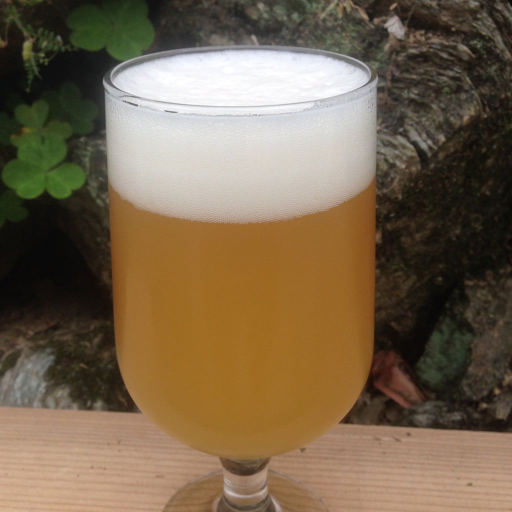 Witbier 1 (ウィットビア)