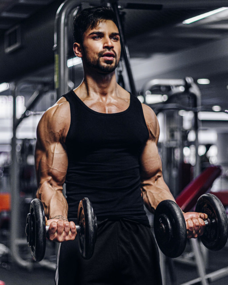 Maximum Muscle Mass Gains Program
