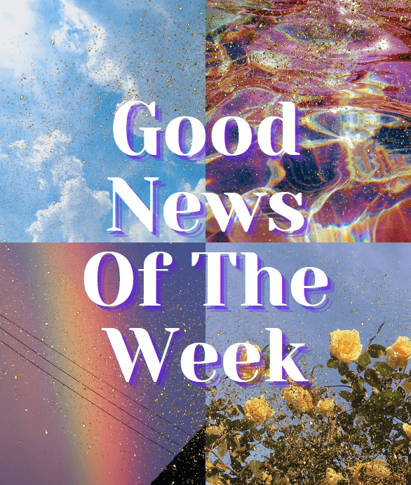 Good News Of The Week | KATCH ME