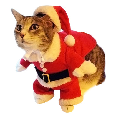 Christmas Pet Costume