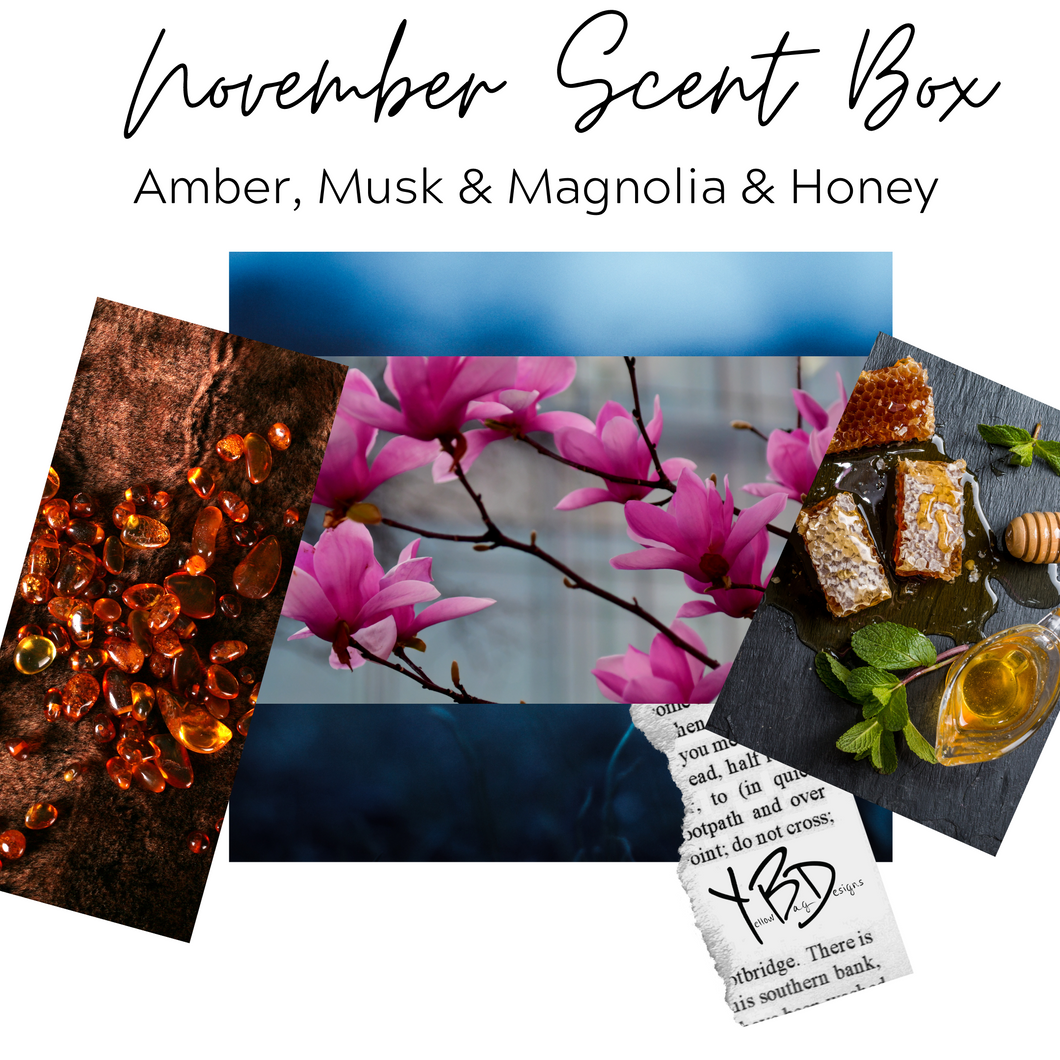 November Scent Box - Amber, Musk & Magnolia & Honey