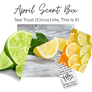 April 2021 Scent Box - See Trust (Citrus) Me, This Is It!