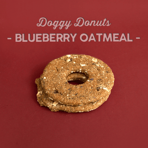 Blueberry Oat Doggy Donuts