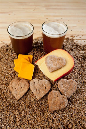 Cheddar Cheese Beer Barley Treats
