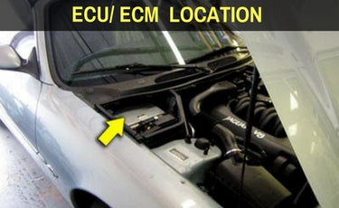 Ferrari 360 ECU Location