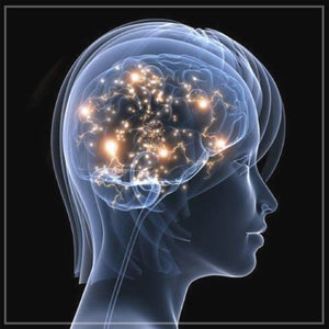 Improving Memory/Brain Health