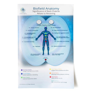 Large Biofield Anatomy Map - Back
