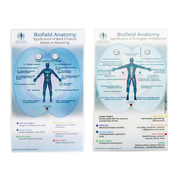 Small Biofield Anatomy Map
