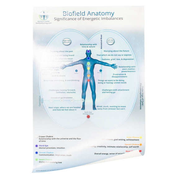 Large Biofield Anatomy Map - Front