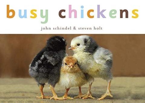 Busy Chickens (A Busy Book)