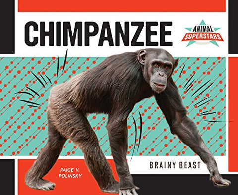 Chimpanzee: Brainy Beast (Animal Superstars)