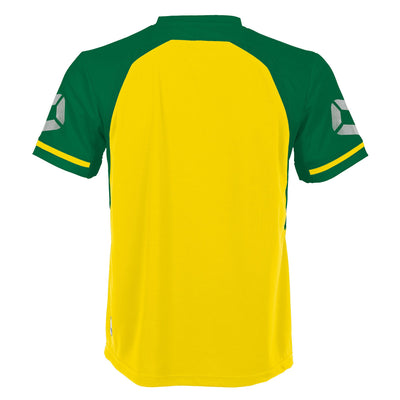 Rear of Stanno Liga short Sleeve shirt in yellow with contrast green sleeves and collar