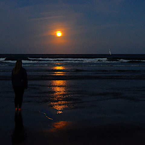 moonrise Ogunquit Beach