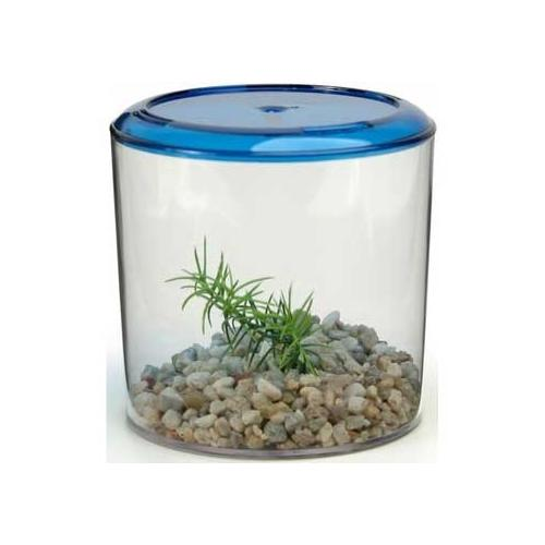 Betta Keeper Round Boxed