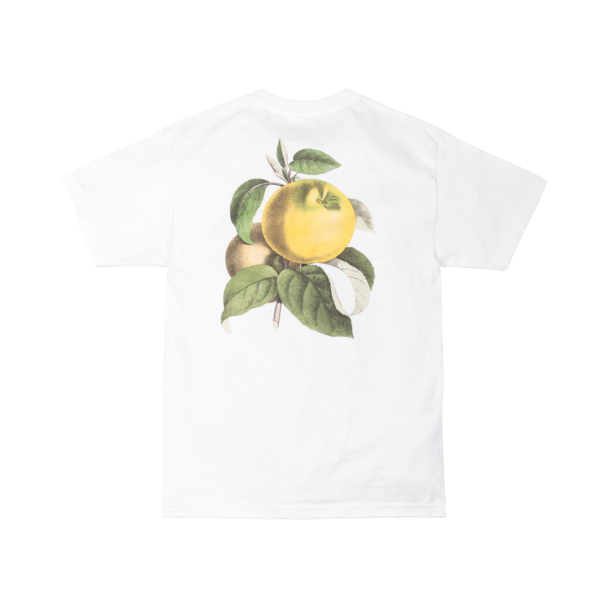 Apple Back Tee - T-Shirts - Saintwoods