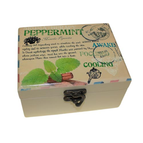 Aromatherapy Box - Holds 12 (Design D)