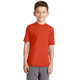 PC381Y Port & Company® Youth Performance Blend Tee (1351507509290)
