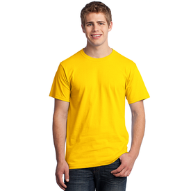 3930 Fruit of the Loom® HD Cotton™ 100% Cotton T-Shirt (1200720609322)