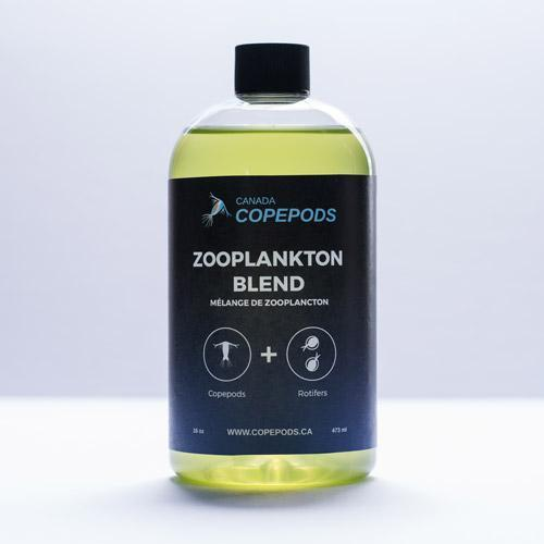 Tigriopus Copepods – Live Concentrated Zooplankton