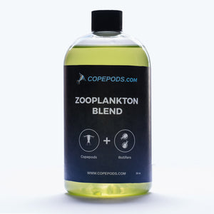 copepods-and-rotifers-live-zooplankton-blend