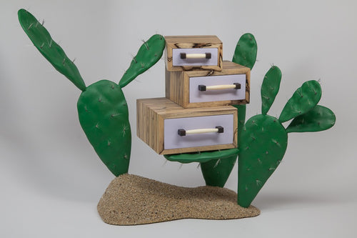 Cactus Jewelry Safe