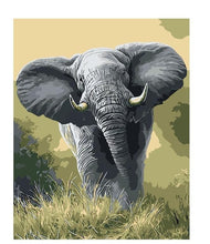 Elephant Abstract Acrylic Coloring Wall Art