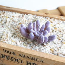 Artificial Succulents plants for Indoor Home