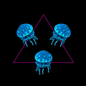 Three Lagoon Jellyfish