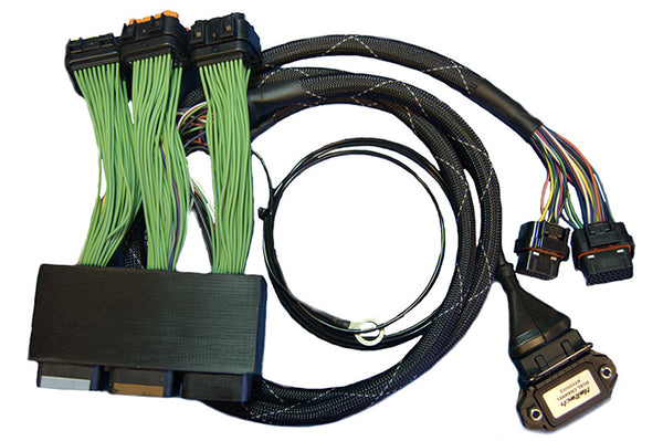 Haltech  Elite 1000/1500 Dodge Neon SRT4 Plug 'n' Play Adaptor Harness