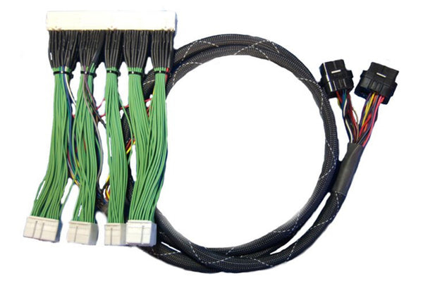 Haltech Elite 2000/2500 Lexus IS300 2JZ GE VVTi (2002-2005) Plug 'n' Play Adaptor Harness