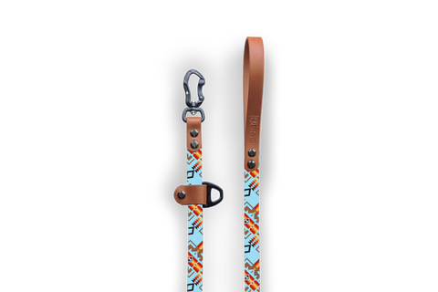 Adirondack Sun Slip-Lead Dog Leash | Durable